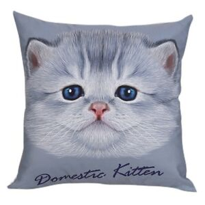 "Beautiful Domestic Kitten Face Print Cotton 18"" X 18"" Cushion Cover Pillow Sofa"
