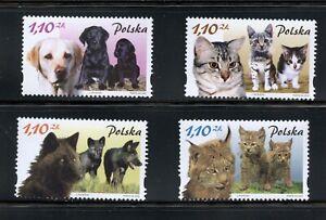C338  Poland 2002   cats  & dogs   4v.      MNH