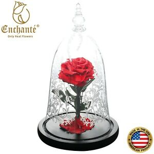 REAL Preserved Forever Rose Beauty & Beast Birthday Engagement Wedding Gift