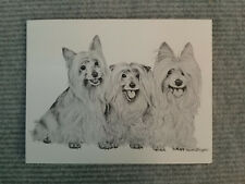 Silky Terrier Pen & Ink Stationary Cards, Note Cards, Greeting Cards. 10 ct.