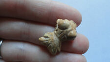 GOLDFISH Set i  (pkg of 8) Picture Jasper Beautiful Carved Animal Beads pendant