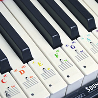 Colorful Keyboard Piano Stickers for 37/49/61/88 Key Keyboards Transparent