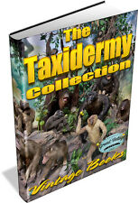 TAXIDERMY VINTAGE BOOKS ON DVD- Stuffing, Mounting Animals, Birds, Insects, Fish