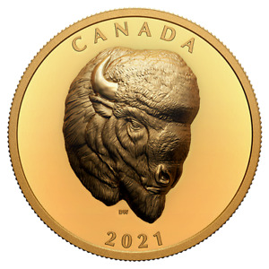 Canada 2021 250$ BOLD BISON 2 oz High Relief Gold Coin Royal Canadian Mint #2