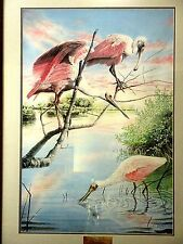 """Peter Gerbert """" Roseate Sunset """" Spoonbill Signed  Numbered Framed Lithograph"""