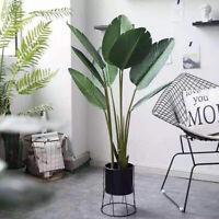 Bonsaischale Mit Untersetzer Kunststoff Eckig Sukkulententopf Blumentopf Durable