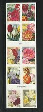 2016 #5051b Botanical Art Booklet of 10 Forever Stamps with #5042-5051