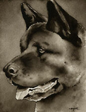 New ListingAkita Art Print Sepia Watercolor Painting Artist Djr
