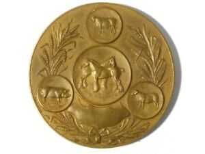1927 Dumfries Agricultural Show Cheese Cup PICTORIAL Bronze Medal Boxed #E33