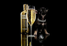 Bling Bling ABSOLUTE VODKA Vodka e diamanti A3 Stampa Artistica Poster
