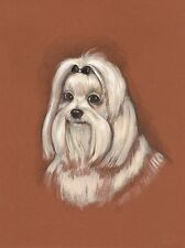 1.5x2 DOLLHOUSE MINIATURE PRINT OF PAINTING RYTA 1:12 SCALE MALTESE PORTRAIT DOG