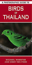 A Photographic Guide to Birds of Thailand by Michael Webster (Paperback, 2010)