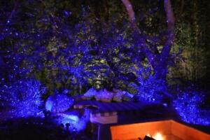 BlissLights 02-FWDEF-BLUE Spright Motion Indoor/Outdoor Firefly Laser Projector