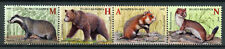 Belarus 2017 MNH Mammals Red Book Badgers Bears 4v Strip Wild Animals Stamps