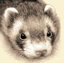 FERRET complete counted cross stitch kit - all materials included
