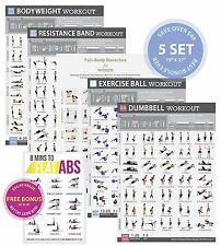 "Gym/Home Exercise Posters Set of 5 Workout Chart (Large 19""X27"") NOW LAMINATED"