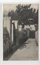 A TYPICAL LANE, ST GEORGES: Bermuda postcard (C27373)