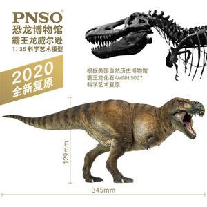 PNSO 1/35 Wilson Tyrannosaurus Rex Figure Dinosaurs Museum Scientific Art Model