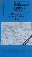 Old Ordnance Survey Maps Newquay & Trevose Head  & Map St Agnes 1894 Sheet 346