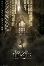 FANTASTIC BEAST AND WHERE TO FIND THEM POSTER Movie Poster 24x36 USA Seller