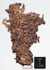 Nativo Cobre Natural Racimo de Cristal Mineral Muestra Bisbee Arizona
