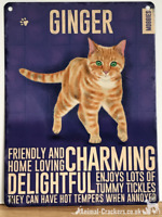 20cm metal vintage style Ginger Cat lover gift breed character hang sign plaque