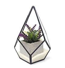 Pots de fleurs en verre pour plante