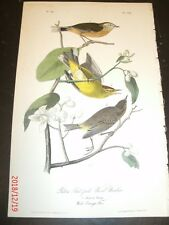 Audubon's Birds of America 1st Edition 1840 YELLOW REDPOLL WOOD WARBLER Plate 90