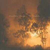Mandolin Orange - Blindfaller [CD]