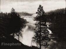 1924 Vintage SCANDINAVIA Photo Art Sweden Porjus Falls Forest Lapland Landscape