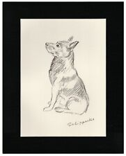 More details for schipperke old original 1937 dog art print by lucy dawson mac ready matted