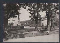 43977) Echt Foto AK Lichtenberg Erzgebirge Am historischen Steinkreuz 1978