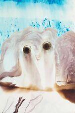 Tonito Original Fine art painting.Organic Expressionism.EXPLORERS 31.Figurative