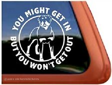 ROTTWEILER - YOU MIGHT GET IN dog sticker decal flyball agility vinyl CAR VAN