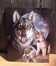 Graham Wolf Experiences Cubs Tin Metal Sign Wall Garage Classic