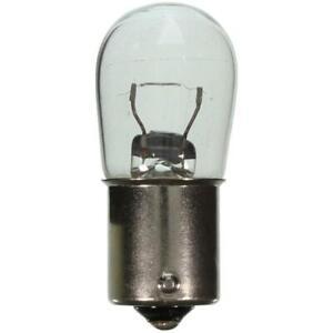 Multi Purpose Light Bulb 1003 Wagner Lighting Standard Fits Miniature Lamp 1003