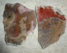 2 Dino Bone Fossil Rock Slabs