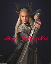 LEE PACE  - The Hobbit: Desolation of Smaug's Thranduil  - 8x10 Photo #5