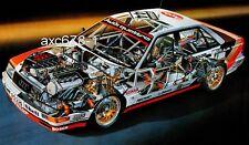 Audi V8 quattro DTM / 1991 -Bild  Schnittzeichnung