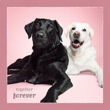 Dog Studio Love Card - TOGETHER FOREVER (Black & White Labs) - DS-C-LV-1143-118