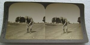 BAY STATE STEREOVIEW OF WALTER TRAVIS PUTTING