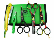 Professional Hair cutting Thinning Scissors Hairdressing Barber Style Beauty KIT