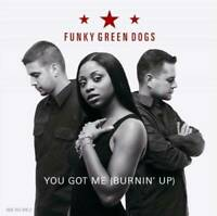 You Got Me Burning Up - Audio CD By Funky Green Dogs - VERY GOOD
