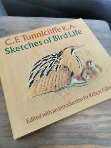 Sketches of Bird Life C.F Tunnicliffe Birdwatching Ornithology