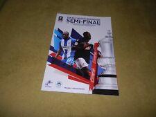 Millwall v Wigan Athletic - FA Cup Semi-Final at Wembley in 2013