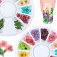 Real Dry Dried Flower Leaves 3D UV Gel False Tips Nail Art Decors Random Color