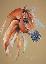 "MAGIC HORSE "" Arabian horse"" 12,6""x17,7""ORIGINAL PASTEL PAINTING"