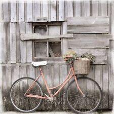 eco-chic: Vintage Bicicleta Imagen TERMINADA 50x50 París Romántico Eurographics