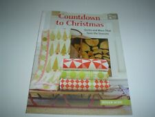 The Patchwork Place Countdown to Christmas Quilts by Susan Ache Paperback New