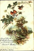 1901 Stempel Gerstetten auf Künstlerkarte Angler zwitschernde Vögel Topographie